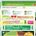 「タダヤサイドットコム」で野菜が食べ放題