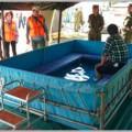 自衛隊イベントの後方支援部隊のオススメ基地祭