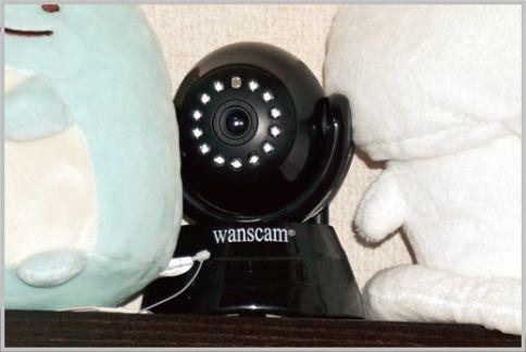 IPカメラを専用アプリでチェック