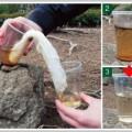 浄水は布やガーゼの毛細血管現象を利用する