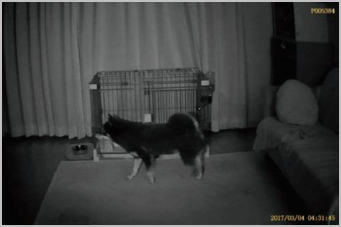 卓上時計に偽装された監視カメラ映像を確認した