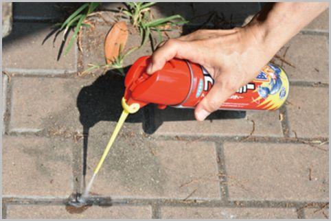 ヒアリ対策にはどんな殺虫剤を使えばいいのか?