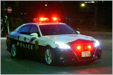 交通防暴警察巡逻车是同一型号但不同的部件?