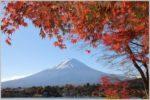 ETC乗り放題プランで富士五湖巡りのドライブ