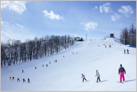 ETC乗り放題の冬プラン「ウィンターパス」発表