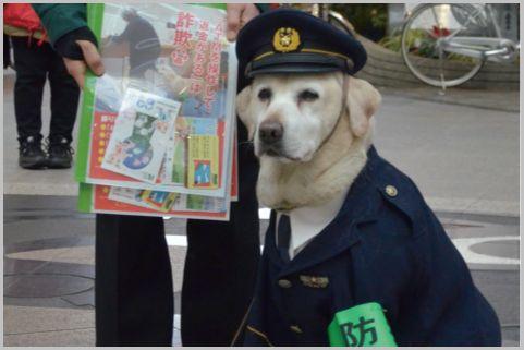 犯人を追う警察犬の所属部署は「鑑識課」だった