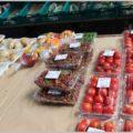 農協系クレジットカードに野菜を安く買える特典