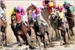 競馬など公営ギャンブルで還元率が高いのどれ?